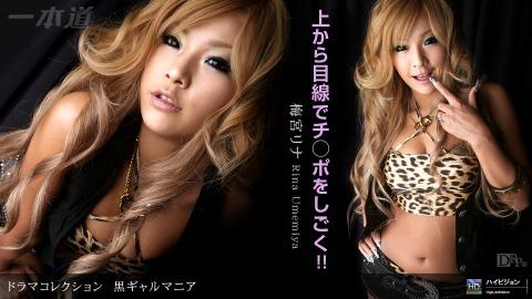 Rina Umemiya: 黒ギャルマニア